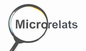 MICRORELATS3