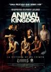 dvd_animal_kingdom