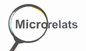 MICRORELATS3-300x179