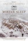 dvd_sueño_de_invierno