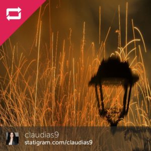 1r-premi-2013-claudia