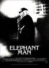 DVD_home elefant