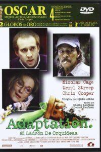 dvd-Ada